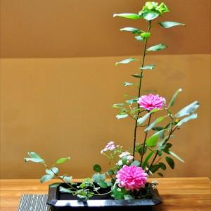 web Ikebana 1